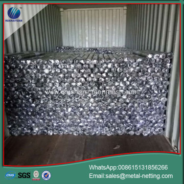 hexagonal wire mesh galvanized chick wire